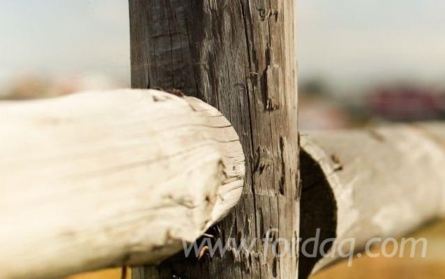 Impregnated-Wooden-Poles