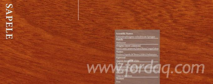Sapelli-Wood-for