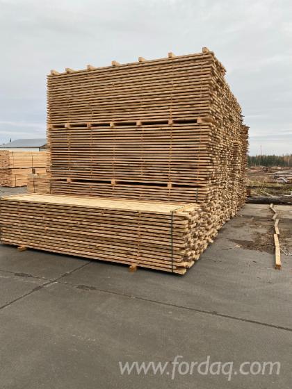 Jela--Bjelo-Drvo--Ari%C5%A1---Cembran-Pine