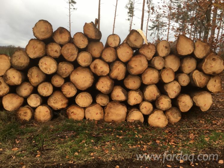Spruce-Sawn-Logs