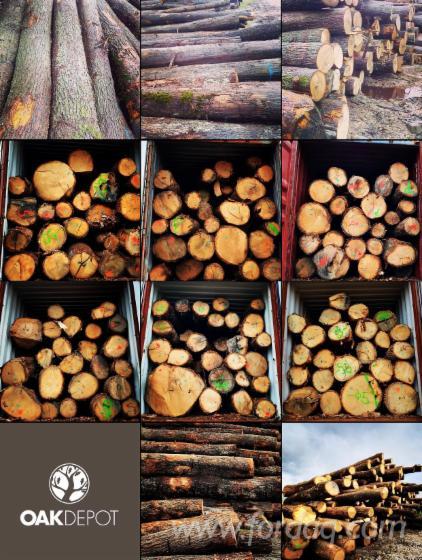 30--mm-Oak-Saw