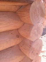 null - Casa De Troncos Estilo Canadense Pinus - Sequóia Vermelha Madeira Macia Européia Belorussia