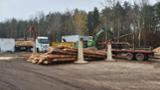 null - Debarked Pine Poles 15-35 cm.