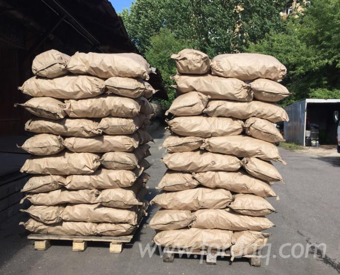Vendo-Carbone-Di-Legna-Betulla