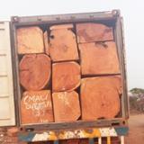null - 方形原木, 非洲红木,马基比,罗得西亚Copalwood
