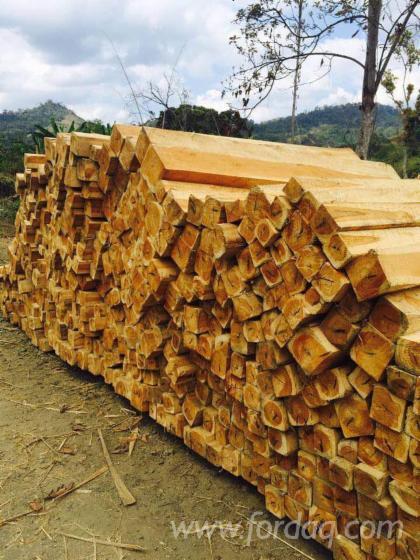 Sale-of-Teak-Wood