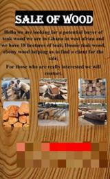 null - Sale of African Pencil Cedar Logs
