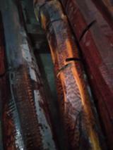 null - Snake Wood Peeling Logs, 10+ cm