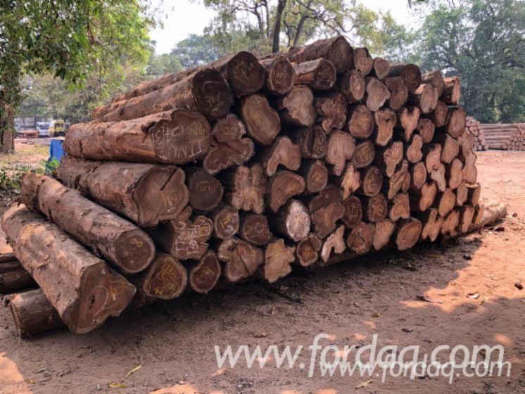 African-Teak-Round-Logs-for