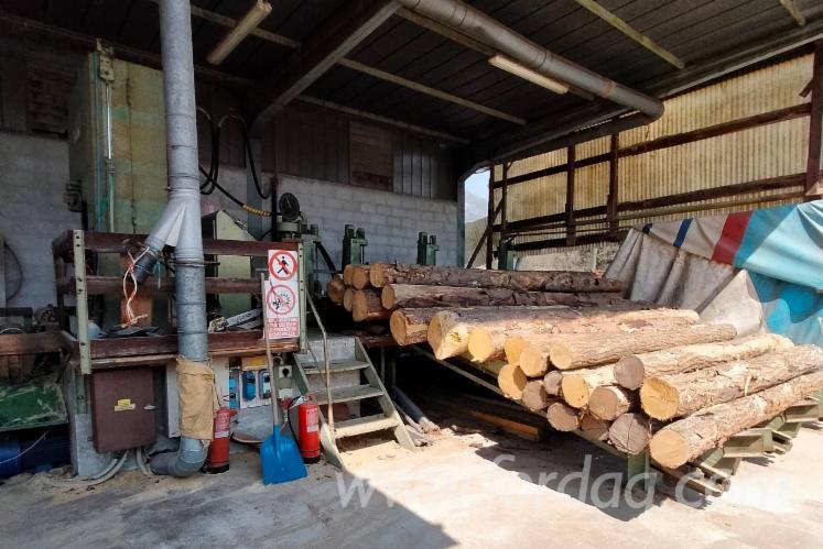 Used-Primultini-SE--CEA-1992-Sawmill-For-Sale