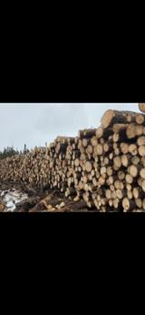 null - Vindem Bustean De Gater ISO-9000 in Eastern Canada