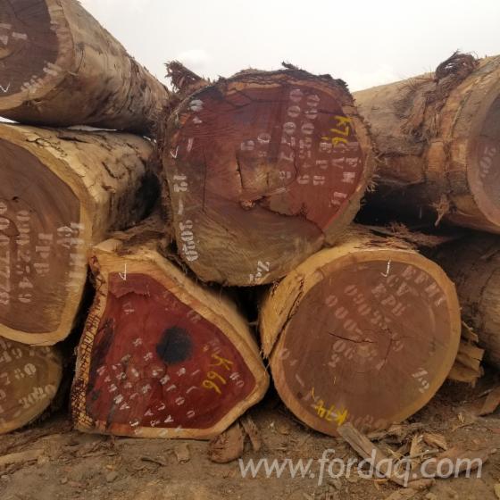 Vender-Troncos-Industriais-Padouk-Camar%C3%B5es