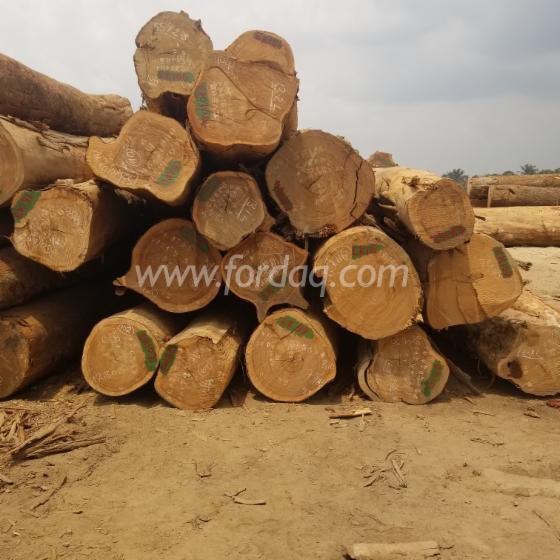 Ekop-Beli-Ekop-Nanga-Logs
