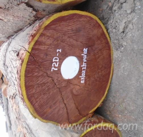 Offering-Sapelli-Sawn-Logs