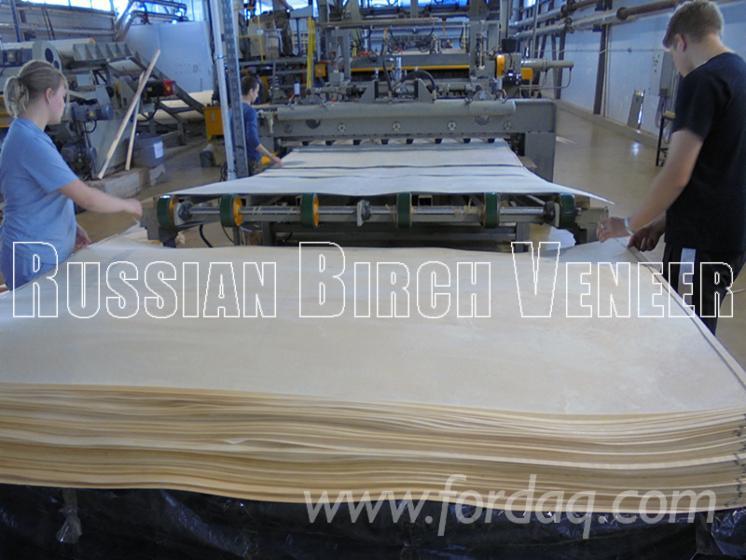 Birch-Rotary-Cut-Face-Veneer--Thickness-0-3-0-6mm