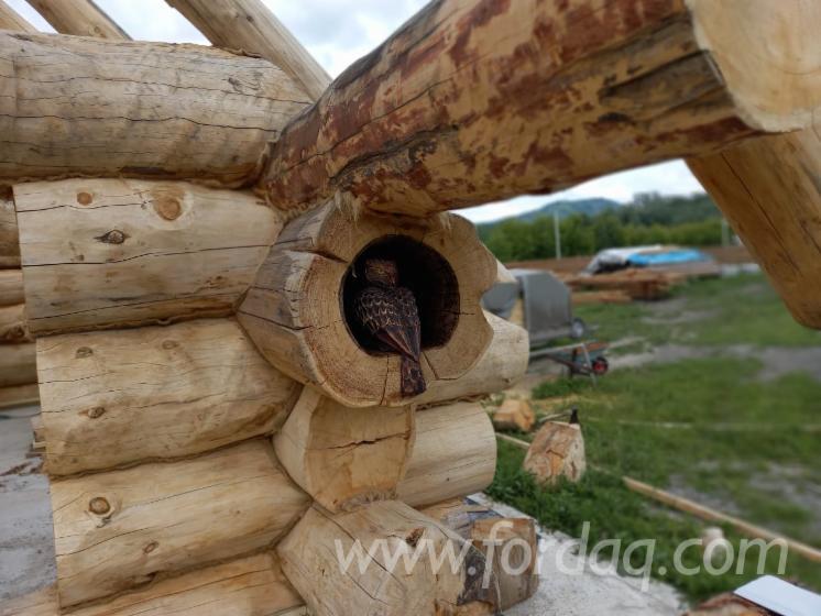 Cedar-Wood