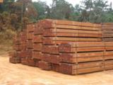 null - 4-seitig Sägegestreiftes Rundholz, Rhodesian Copalwood, African Rosewood