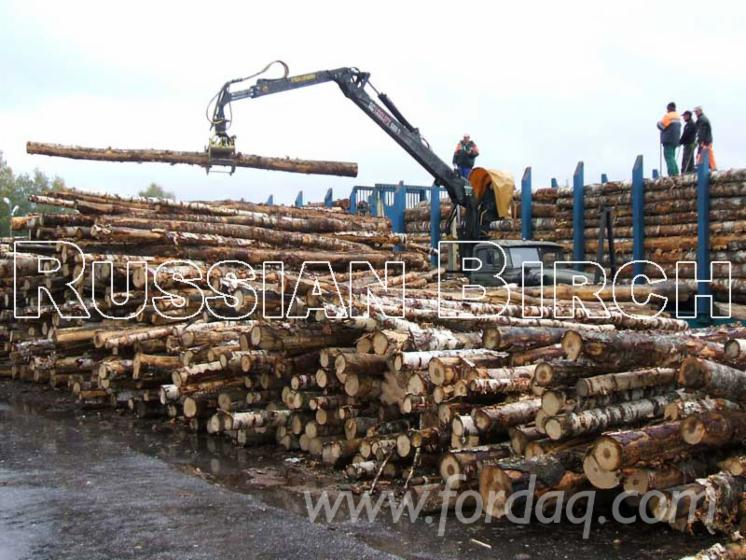 Birch-Firewood-from-Russia%27s