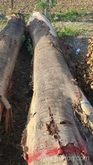 Cherry-Sawn-Logs