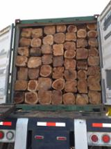 null - 35 an up mm Teak Square Logs from Ecuador