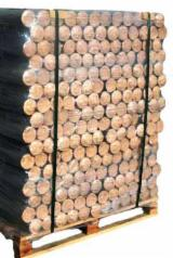 Wholesale DIN,ONORM Beech (Europe) Wood Briquets in Romania