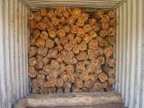 Tropical Wood  Logs Spain - Teak logs