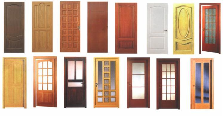 Asian-tropical-species--Doors