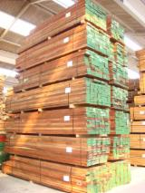 FAS Padouk (Camwood, Barwood, Mbel, Corail) Sawn Timber from Cameroon