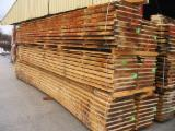 Hardwood  Unedged Timber - Flitches - Boules PEFC FFC - Pefc/ffc Beech (europe) Boules from France, Franche Comte