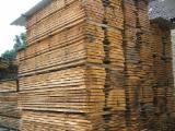 Hardwood  Unedged Timber - Flitches - Boules - FSC, Oak (European), Boules, Germany, Spessart
