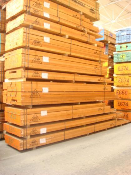 Vindem-Cherestea-Tivit%C4%83-Meranti
