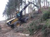 Forest Services - Mechanized felling, Austria
