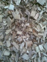 Firewood, Pellets And Residues - All Broad Leaved Species Wood Chips From Sawmill 0-5 cm