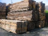 Laubholz  Blockware - Unbesäumtes Holz   Frankreich - Fordaq Online Markt Blockware, Kastanie, PEFC/FFC