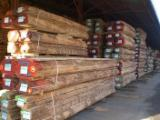 Hardwood  Unedged Timber - Flitches - Boules - Boules, Ash (Brown), PEFC/FFC