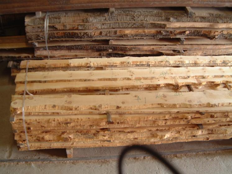Cembran-Pine--Swiss-Pine---Loose-30--40--50--60--80--100--120-mm-from-Italy