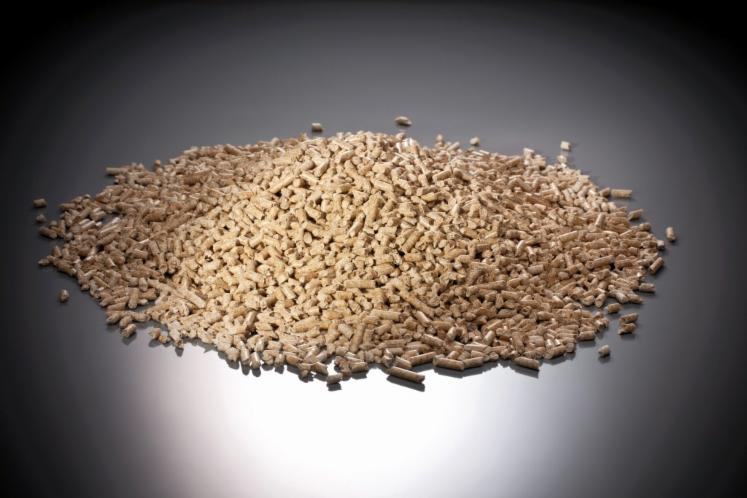Wood Pellets France ~ Wood pellets spruce picea abies whitewood