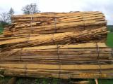 Ogrevno Drvo - Drvni Ostatci All Species - All Species Okrajci/Završeci Njemačka