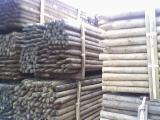 Stakes, Pine (Pinus sylvestris) - Redwood, FSC
