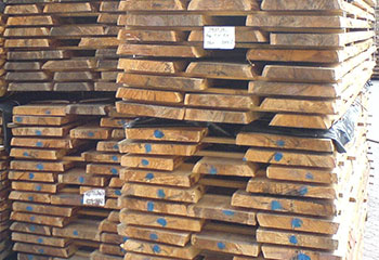 Unbes%C3%A4umtes-Holz