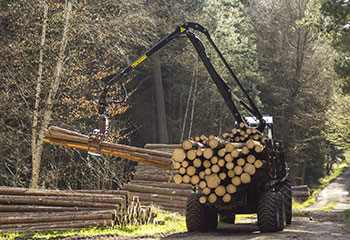 Maquinaria-forestal-y-cosechadora