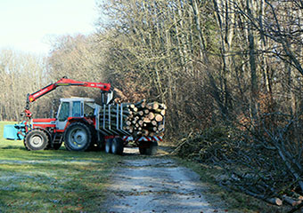 Servicios-Forestales